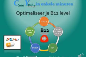cy-talk-optimaliseer-je-b12